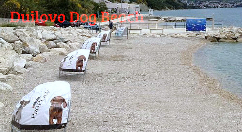Duilovo dog beach