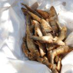 Fried smelts